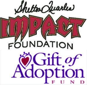Impact Charity